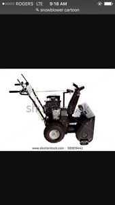 Wanted snowblower working or not