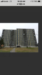 Looking to purchase @ Brentwood Towers.  1 or 2 BDR Condo