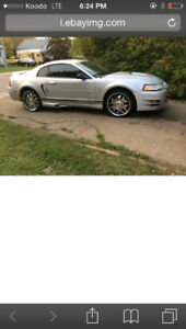 2000 Ford Mustang Coupe Coupe (2 door)