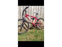 Muddyfox impel mountain bike
