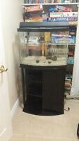 25 gallon aquarium , light and stand