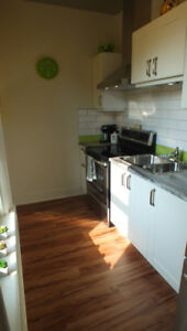 2 bedroom furnished apartments