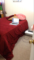 looking for a roommate in parry sound, near canadore college