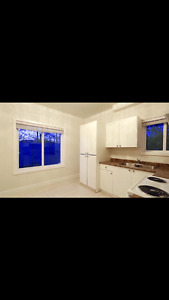 Brand new ground level suite by bcit insuite washer dryer