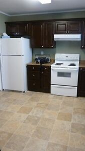 Room for Rent - Excellent Location Close to MUN/HSC/Mall/MI/CONA