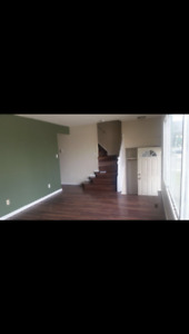Gorgeous two story half duplex only $1395!