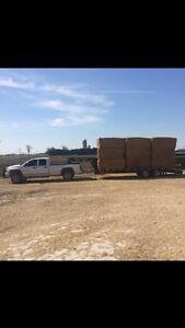 Trucking,  livestock & float moving