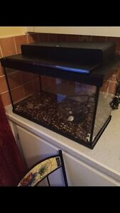 10 gallon fish tank with everything