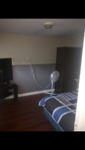 3 Bedroom basement apartment available for rent November 1st.
