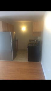 Brand new renovated 2 bedroom apartment. Sublet May - September