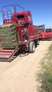 Top Quality Small Square Bales **3500 left**  Free Quick Loading