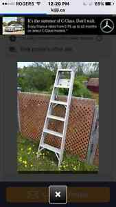 6 step Ladder