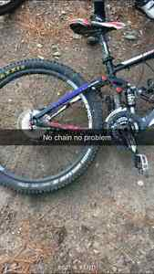 Wanted STOLEN GIANT TRANCE