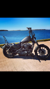 Full custom 2010 Harley sportster iron