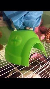 Little bunny house