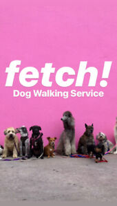 Fetch! Dog Walking Service