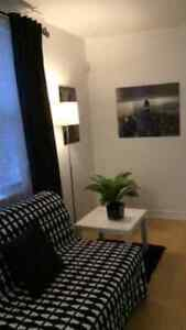 Cozy 1 Bedroom  Furnished apt near the Lake