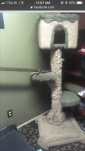 Free indoor/outdoor cats to a good home with cat tree