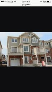 New townhome for rent
