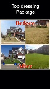 New home owner in Lindsay? Brown Sod?  Kawartha Lakes Peterborough Area image 1