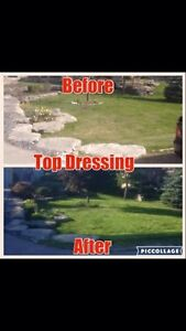 New home owner in Lindsay? Brown Sod?  Kawartha Lakes Peterborough Area image 4
