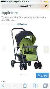 Joovi sit and stand stroller