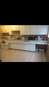 Roommate needed Downtown