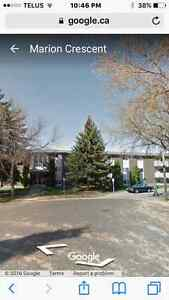 New Renovated 2 Bedroom Apartment Suite ,St Albert Mission Area