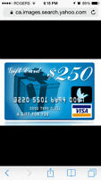 Lost $250 VISA Gift Card