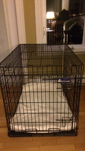 Petmate dog kennel for sale