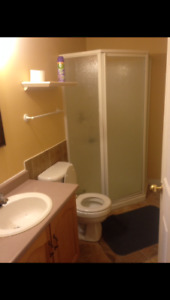 Beautiful 1 bedroom above ground basement apartment for rent