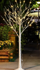 6' LED pre lit birch outdoor trees