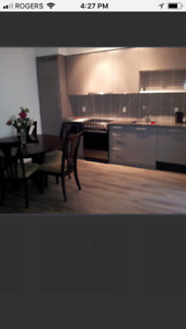 Fully FURNISHED CONDO (1bed+den), from January 1st-April 30