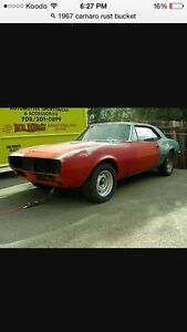 1967-1969 Camaro or firebird project wanted
