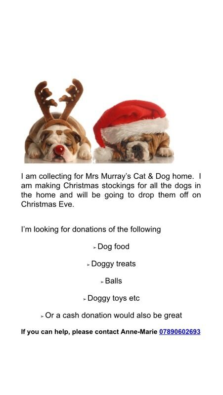 Mrs Murray S Home For Dogs