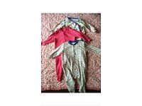 Large bundle of baby girls clothes 3-6 months (25 items in total)