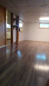 1 bdrm bsmt apt with huge laundry/storage room for rent, Welland