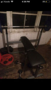 BENCH PRESS - (WEIGHT BENCH ONLY... WEIGHTS/BAR NOT INCLUDED)