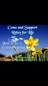 Craft Show for Relay for Life June 12,2016 10-3
