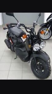 80 mpg Honda ruckus 750 km prices to sell inspected
