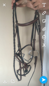 full size English bridle for sale