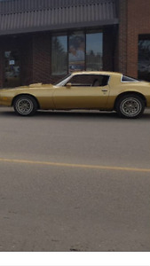 Priced to sell 1980 firebird trans am