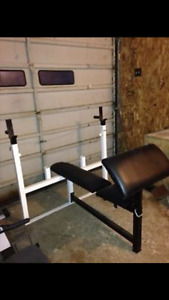 Northern lights Olympic bench