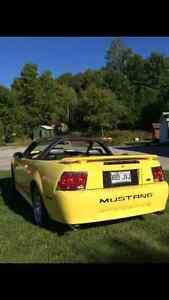 Ford Mustang 2002 Gatineau Ottawa / Gatineau Area image 2