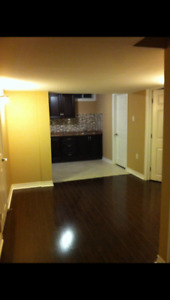 Basement to rent in Torbram and Father Tobin area