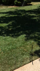 Gee & Vee ' Lawn Care Landscaping!! Planting and Weed Removal!!