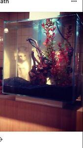 Aquarium 12 gallons a donner