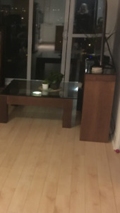 Coffee table and TV stand combo