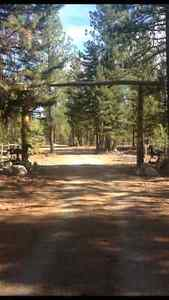 Log home 10 acre ranch