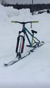 Trade 2010 norco havoc skibike